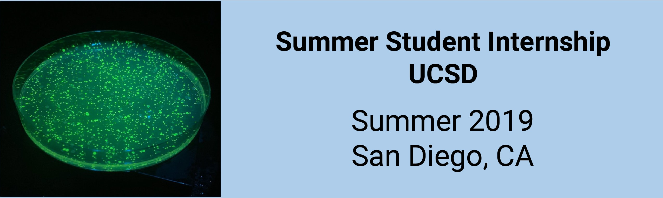 UCSD Students